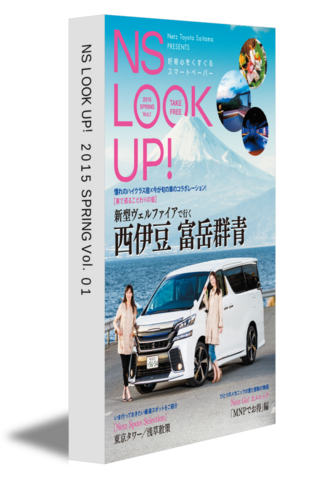 NS LOOK UP! 2015 SPRING Vol.01